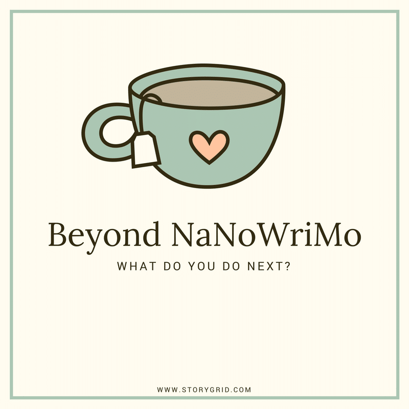 Beyond Nanowrimo: What do you do next?